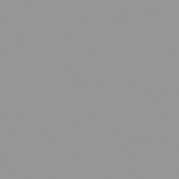 RAL 7004 Signalgrau matt