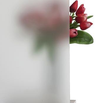 CreativTür Verglasung: Ornamentglas Satinato